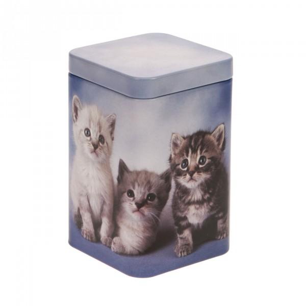 Theeblik Kittens | 100 gr